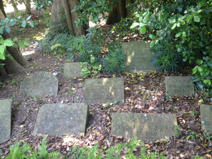 Picture of pet graves
